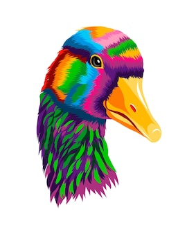 Retrato de cabeza de ganso pato gris drake de pinturas multicolores salpicaduras de dibujo coloreado de acuarela
