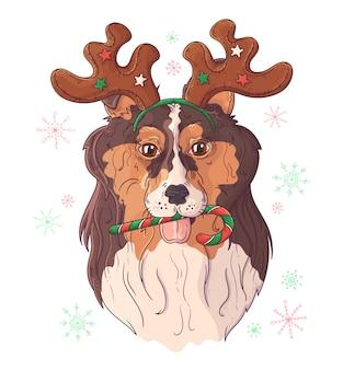 Retrato dibujado mano del perro collie en accesorios de navidad.
