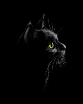 Retrato de un gato sobre un fondo negro. ilustración
