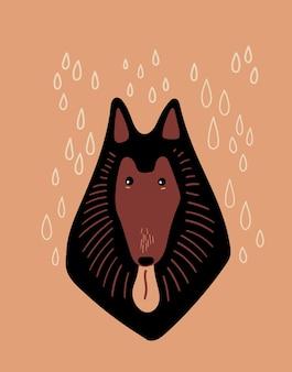 Retrato de perro collie