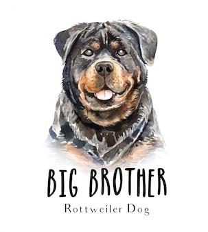 Retrato de perro rottweiler para impresión.