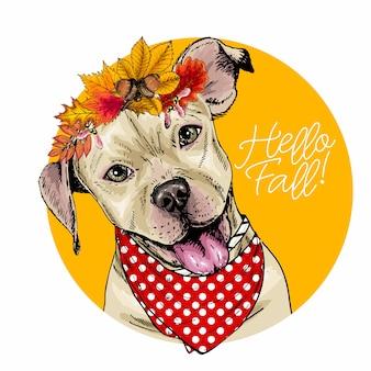 Retrato de vector de perro pit bull terrier con corona de hojas de otoño.