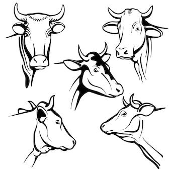 Retratos aislados de cabezas de vacas, caras de ganado para productos lácteos naturales de granja, embalaje
