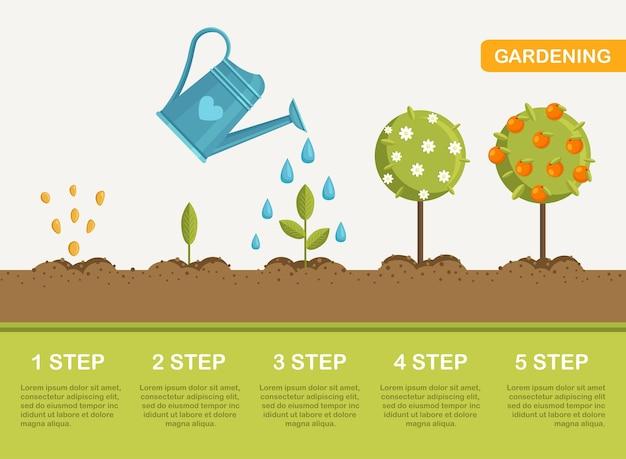 Riego de plántulas plantas de jardinería ilustración