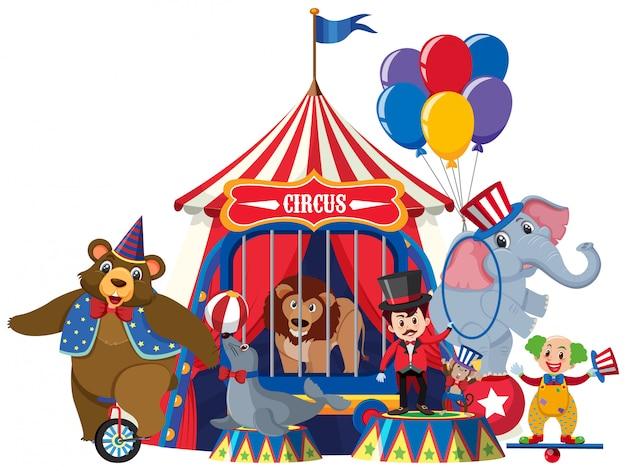 Ring master y animales de circo en blanco