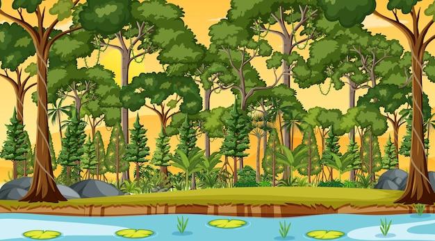 Río a lo largo de la escena del bosque al atardecer.