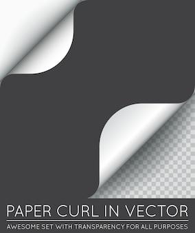 Rizo de página de papel con sombra aislado.