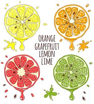 Rodajas de frutas frescas de limón, lima, naranja y pomelo.