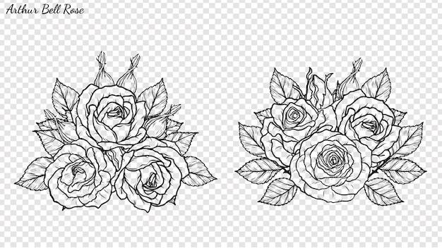 Rosa adorno vector a mano dibujando.