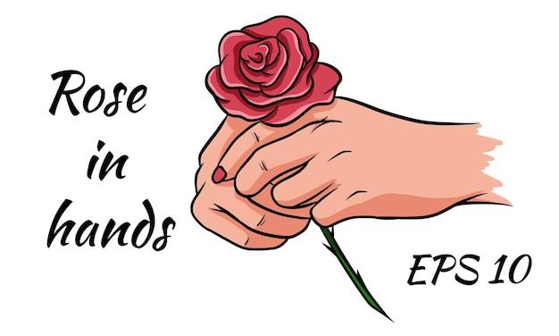 Rosa roja en manos femeninas. romántico. ilustración vectorial dibujo aislado sobre un fondo blanco.