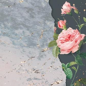 Rosa rosa en blanco con espacio de copia