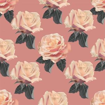 Rosa rosa de patrones sin fisuras