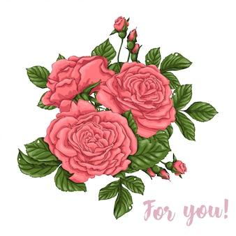 Rosas de coral dibujo a mano