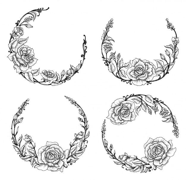 Rose floral, conjunto de ilustración