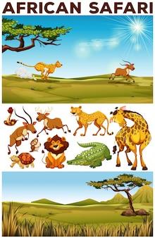 Safari tema con animales salvajes en el campo de ilustración