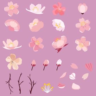Sakura conjunto de paquete de flor de cerezo