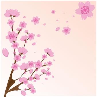 Sakura flores rosa sobre fondo rosa. vector