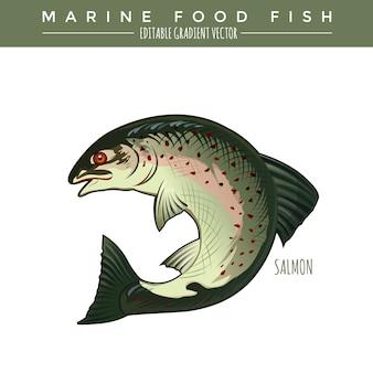 Salmón. comida marina pescado