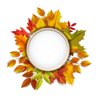 Saludos y regalos por el concepto de temporada otoño y otoño. fondo de otoño, cartel y plantilla de banner con coloridas hojas de otoño.