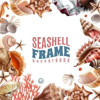 Seashell realistic frame