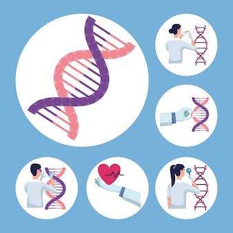 Seis elementos de pruebas genéticas
