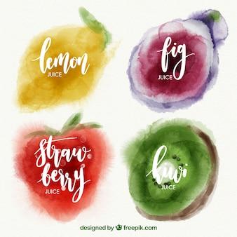 Selección de acuarela de cuatro frutas