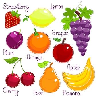 Selección de frutas tropicales frescas enteras de colores con etiquetas