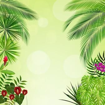 Selva tropical en fondo verde