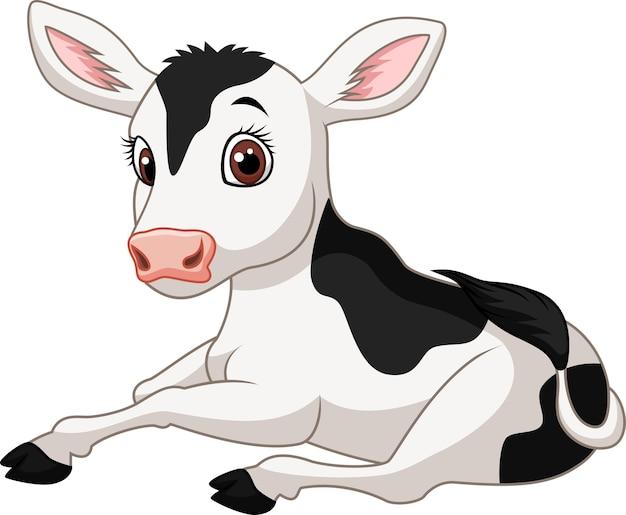 Sentada divertida de la vaca del bebé de la historieta aislada en el fondo blanco