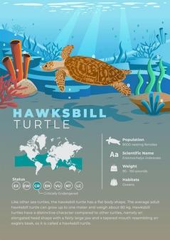 Serie de infografías de animales - tortuga carey