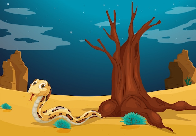 Una serpiente en el desierto