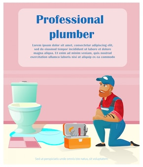 Servicio de fontanero profesional a domicilio, reparación.