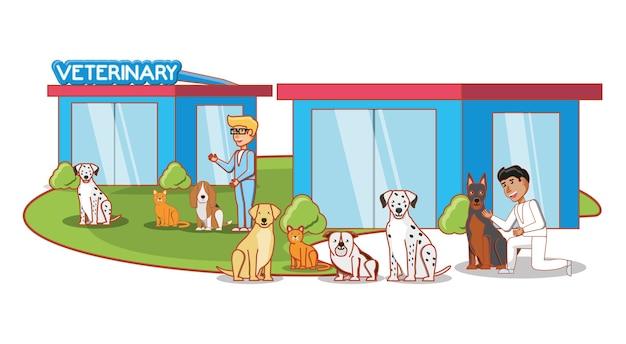 Servicio veterinario set iconos