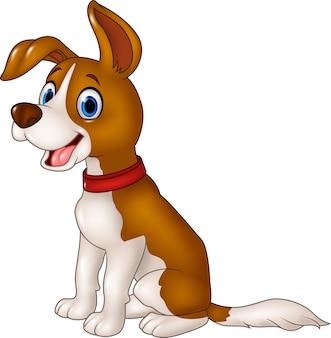 Sesión de perro gracioso de dibujos animados aislado sobre fondo blanco