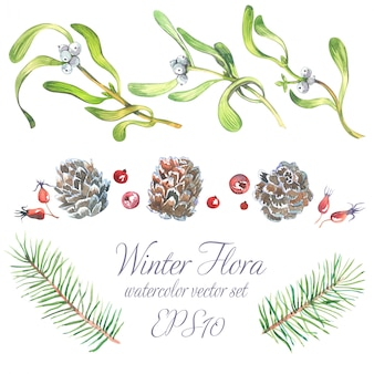 Set de acuarela de navidad de ramas de árboles, ramitas de muérdago con bayas blancas.