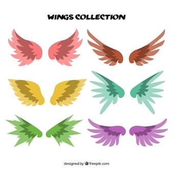 Set de alas decorativas de colores