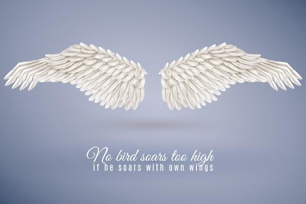Set de alas de pájaro realistas