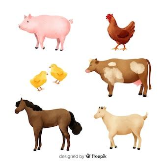 Set de animales de granja en acuarela