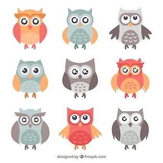 Set de búhos adorables en diseño plano