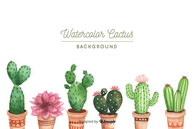 Set de cactus
