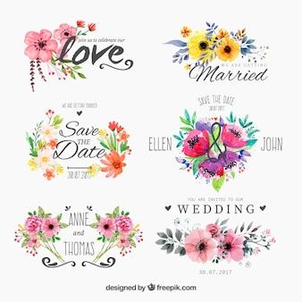 Set de insignias floridas de acuarela para boda