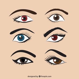 Set de ojos femeninos de colores y cejas