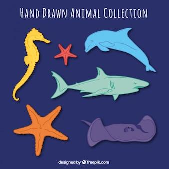 Set dibujado a mano de animales marinos