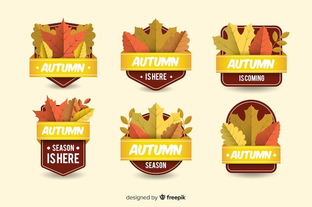 Set de distintivos otoñales