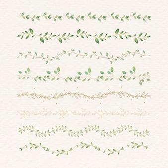 Set divisores botánicos