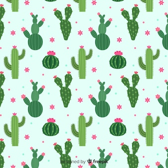 Set de estampados de cactus