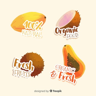 Set etiquetas acuarela fruta orgánica