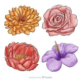 Set flores dibujadas a mano acuarela