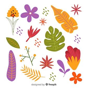 Set de flores y hojas dibujadas