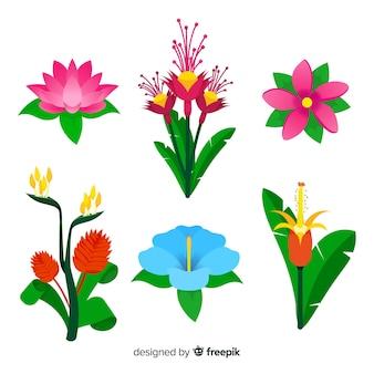Set de flores y hojas tropicales